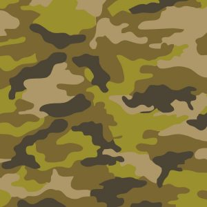 Woodland Spring Camouflage