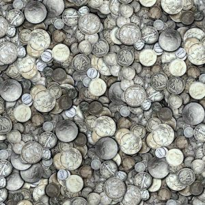 Tarnished Silver US Coins