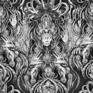 Medusa 25