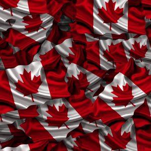 Canadian Flag 23