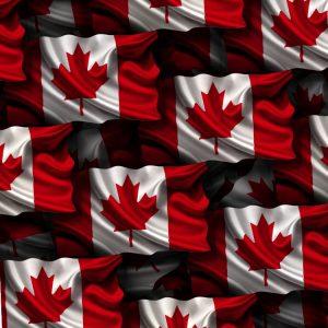 Canadian Flag 24