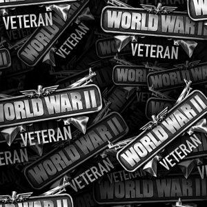 WW2 War Veteran 22