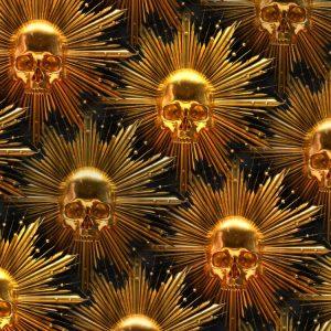 Golden Sun Skulls 23