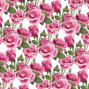 Wet Pink Roses 23