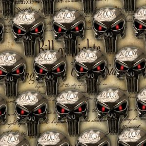 Chrome Constitutional Punisher Skull 24