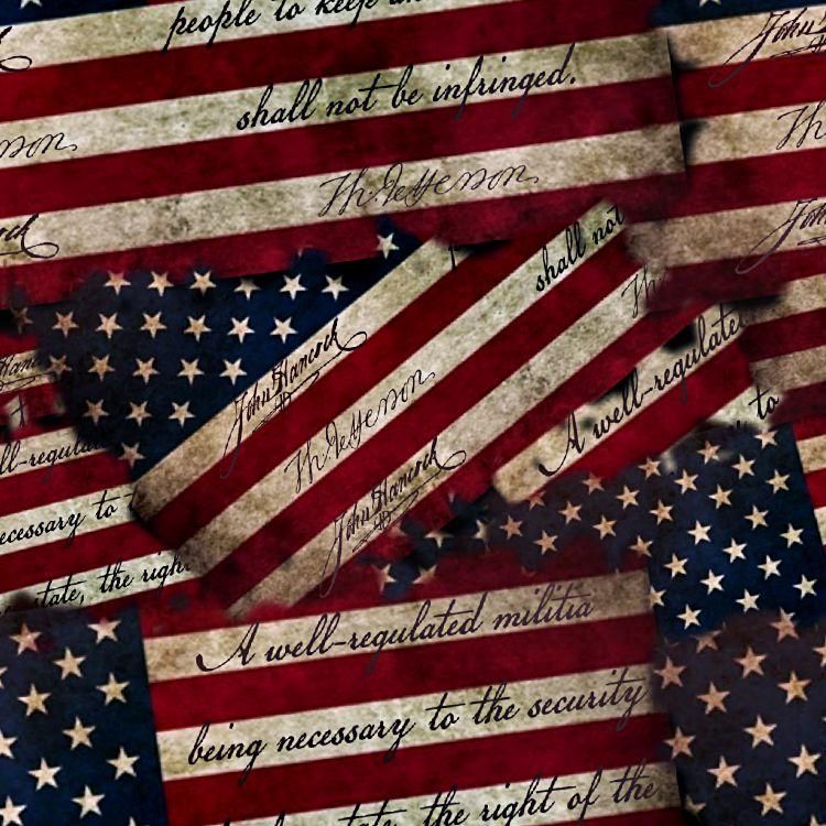 Second Amendment Flag 22 thumb 1