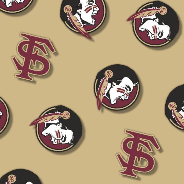 FSU Seminoles 24 thumb