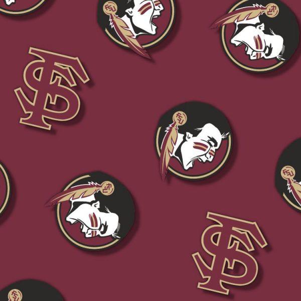 FSU Seminoles 25 thumb