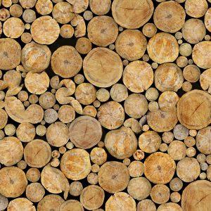 Log Pile 22