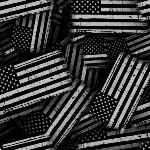 Thin White Line Flag Distressed