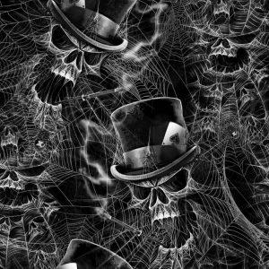 Spiderweb Tophat Skull
