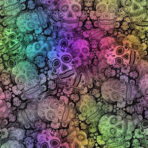 Sugar Skulls 48