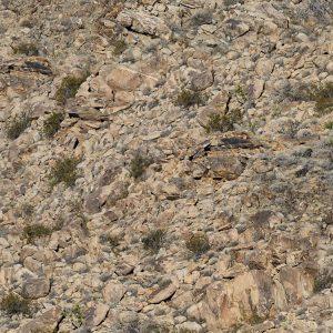 Hidden Canyon Camo thumb