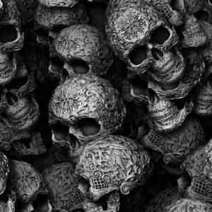 Silver Ornamented Skulls